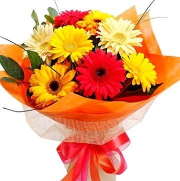 9 adet karışık gerbera buketi  Bingöl Gölüm Çiçek çiçek , çiçekçi , çiçekçilik