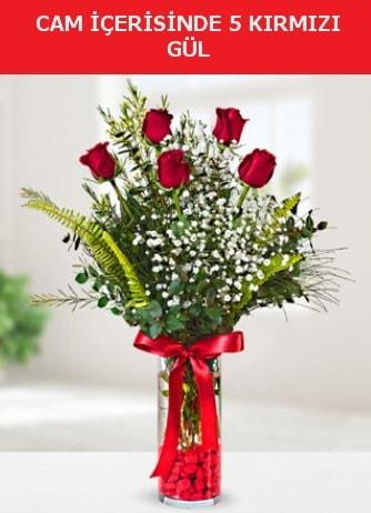 Cam içerisinde 5 adet kırmızı gül  Bingöl Gölüm Çiçek çiçek siparişi sitesi