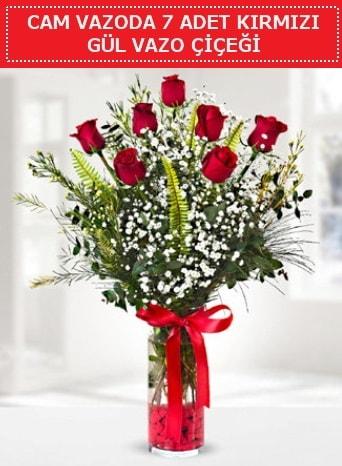 Cam vazoda 7 adet kırmızı gül çiçeği  Bingöl Gölüm Çiçek çiçek gönderme sitemiz güvenlidir