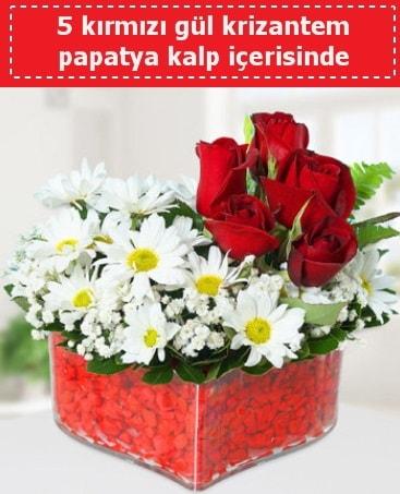 mika kalp içerisinde 5 kırmızı gül papatya  Bingöl Gölüm Çiçek çiçek gönderme