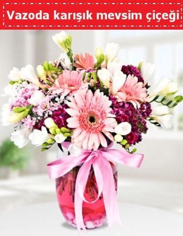 Vazoda karışık mevsim çiçeği  Bingöl Gölüm Çiçek çiçek , çiçekçi , çiçekçilik
