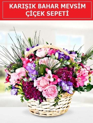 Karışık mevsim bahar çiçekleri  Bingöl Gölüm Çiçek ucuz çiçek gönder