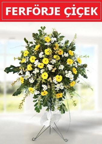Ferförje çiçeği modeli  Bingöl Gölüm Çiçek çiçek gönderme sitemiz güvenlidir